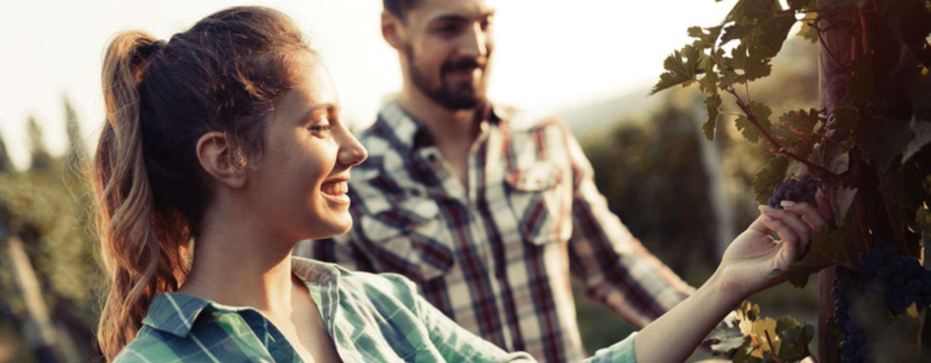 Les Speed Datings de L'amour est dans le pré